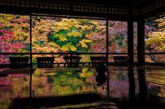 修学旅行などでも訪れることの多い京都。そろそろ定番スポットを離れ、キナリノ女子らしい素敵な穴場スポットに出かけてみませんか?面白体験のできる場所や、京都らしさも残したモダンなショップなどご紹介します。 Kumamoto, Beautiful Places To Visit, Beautiful World, Japanese Style House, Japanese Lifestyle, Japanese Temple, Japan Photo, Japanese Architecture, Kyoto Japan
