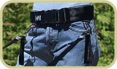 Free your hands while walking your dog with this Hands Free Walking Belt. Seattle Dog, Camping Stuff, Pet Stuff, Dog Training, Your Dog, Safety, Walking, Outdoors, Hands