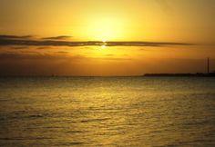 regals de la natura > VNG - 26 Oct 2014 tots tenim una finestra que mira al mar una platja que respira al pit, un vaixell a punt de salpar, una illa que explorar.