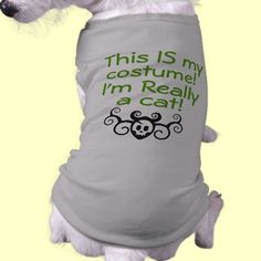 This IS my costume! Dog Shirt  1st Place Winner of the Insomniacs contest!  Really a cat! Halloween Costume shirt for your lucky dog! Funny dog shirts! Puppy shirts for Dogs with Attitude! Customize these shirts with your own words!