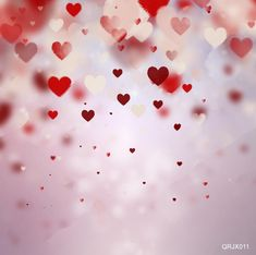 LIFE MAGIC BOX Valentine Photos Backgrounds for Pictures Valentine's Day Photo Booth Backdrops 01