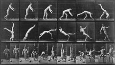Muybridge then received a two year study with a new benefactor, the University of Pennsylvania. Using 36 cameras simultaneously, Muybridge and assistants photographed animals and people engaged in almost every conceivable activity.