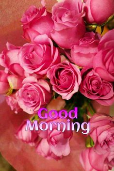 love roses are red Tuesday Greetings, Good Night Greetings, Good Night Wishes, Morning Greetings Quotes, Morning Quotes, Good Morning Beautiful Images, Good Morning Picture, Good Night Image, Morning Pictures