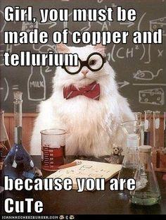 I [heart] Science Cat!