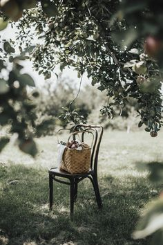 Winter Photography, Life Photography, Picnic Time, Slow Living, Edible Garden, Country Life, Country Living, Simple Living, Summer Fun