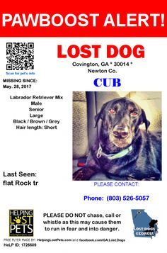 Please spread the word! Cub was last seen in Covington, GA 30014.  Message from Owner: HELP ME FIND MY MISSING BLACK LAB/MIX 13 YEAR OLD NEUTERED MALE SWEETHEART!!     last seen on forest drive, covington ga 30016 and Dearing and Floyd street areas.  i still have a few posters up close to where he went missing on a few telephone poles.    13 year old neutered male lab mix    his name is cub   very friendly, he dug out of a friend's back yard to find me before I returned to him and he has…