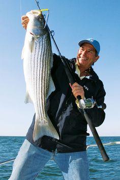 striped bass holdup