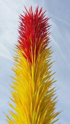 Chihuly - Phoenix botanical garden Az 2014
