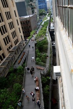 NYC. Take a walk along The High Line. // 1.45-mile-long elevated rail structure Runs from Gansevoort St to West 34th St.