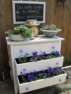 Dresser drawer repurposed into vegetable garden