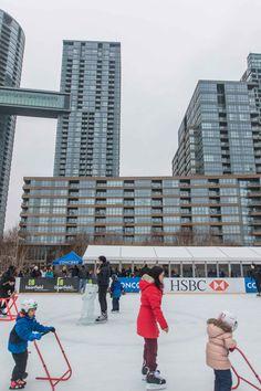 Toronto Views's albums Visit Toronto, Toronto Ontario Canada, Downtown Toronto, Toronto Winter, Outdoor Skating, Ice Rink, Winter Snow, Cn Tower, Memoirs