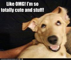 Like OMG!