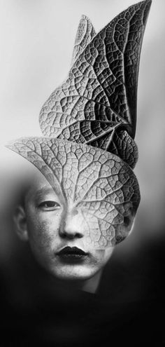 """Feuille"" by Antonio Mora, Photo Collage Creative Photography, Digital Photography, Portrait Photography, Levitation Photography, Water Photography, Abstract Photography, Photomontage, Trucage Photo, Karl Blossfeldt"