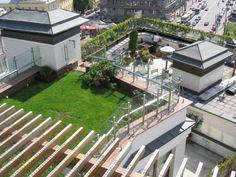 Сад на крыше дома фото