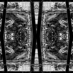 Desde la Ventana. 2/4. Carlos De Vasconcelos. CMDVF. #CarlosDeVasconcelos #CMDVF #Diseño #Ilustración #Arte #Artista #BlancoyNegro #Ventana #Matas / #Design #Illustration #Art #ArtWork #Artist #BlackAndWhite #bw #bnw #Window #Bush Bush, Illustration, Animation, Black And White, Drawings, Artwork, Pictures, Painting, Image