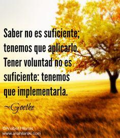 Saber no es suficiente; tenemos que aplicarlo. Tener voluntad no es suficiente: tenemos que implementarla. ~Goethe  #Frases #Reflexiones