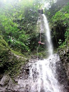 Do I dare rappel a water fall. YEP! May 30th Costa Rica here I come : )