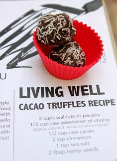 Cacao Truffles- walnuts/pecans, sweetener (agave, coconut nectar, honey, etc)… Walnut Recipes, Raw Food Recipes, Healthy Recipes, Dehydrator Recipes, Food Processor Recipes, Truffle Recipe, Raw Food Diet, Healthy Treats, Eating Healthy