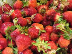 By Far, Our Earliest Fruit of the Year: Strawberries!