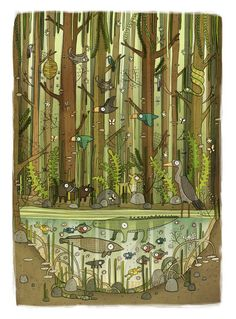 Brendan Kearney - Illustration and design: Mangrove Swamp Art And Illustration, Illustration Children, Art Picasso, Grafik Design, Ghibli, Illustrators, Art Drawings, Concept Art, Cool Art