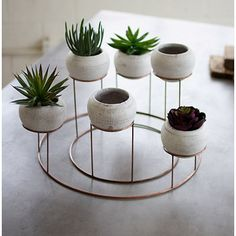 Kalalou Set Of 6 White Clay Planters With Copper Finish Wire Centerpiece - All For Garden Contemporary Planters, Modern Planters, Indoor Planters, Hanging Planters, Commercial Planters, White Planters, White Clay, Clay Pots, Planter Boxes