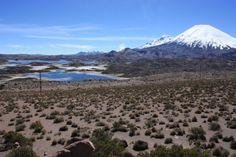 Un pueblo interesante de visitar es Codpa o Salitroso en lengua aymara. Está ubicado a 113 km. de Arica, en un valle verde que destaca en medio de una zona desértica, cercano a la frontera con Bolivia. Es parte de la  Región de Arica y Parinacota, en el extremo norte de Chile. Esta localidad de origen prehispano, tiene un clima templado y agua pura, donde destaca  vino pintatani, que se ha hecho famoso.