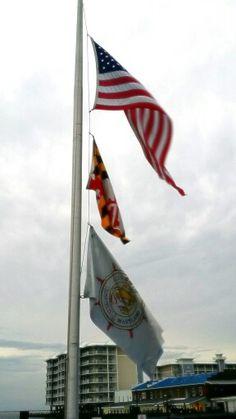 Flags on the dock in Crisfield, Maryland.   #baylife #easternshore #maryland #lifeondelmarva