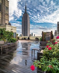 Last days of summer. Roses, rain and a wonderful view of the iconic Empire State…
