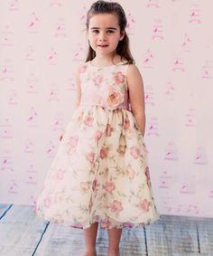 Vintage Rose Floral Organza Dress - Toddler & Girls