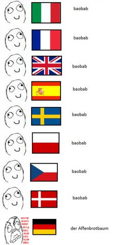 10+ Hilarious Reasons Why The German Language Is The Worst
