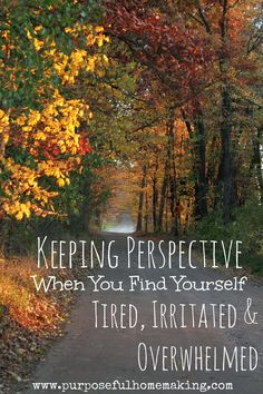 Sometimes it helps to step back and take a look at the big picture in order to get through the days of motherhood.  Purposeful Homemaking: Keeping Perspective When You Find Yourself Tired, Irritated and Overwhelmed.