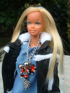 Barbie poppy parker silkstone long chained necklace and seed charms