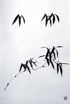 教你画竹--洛阳晚报--河南省第一家数字报刊