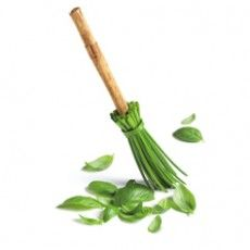 Chive Broom and Leaves by Pret A Manger