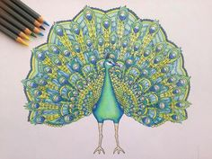 Absolutely STUNNING peacock coloured in by Kkcc Smith  Those colours are beyond gorgeous  If you've also had a go at March's freebie page please tag me so I can admire your artwork. I love seeing the effort gone into them and also how everyone has their own unique style