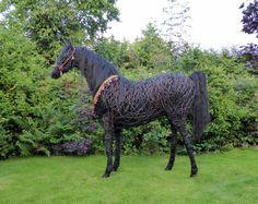 Willow Arabian horse