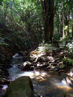 Waterfall around the corner - Fiji