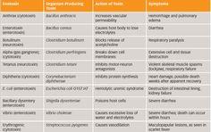 Common Exotoxins