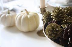 Ashlee Proffitt: Thanksgiving Table
