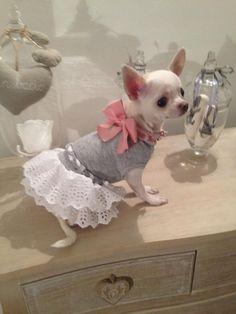 ideas de vestidos para Pitufa