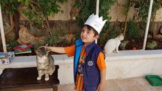 #HouseofCats #Syrianchildren #SyrianCats #love #beauty #cuteness #cats Syrian Children, Kanken Backpack, Childhood, Backpacks, Cats, Beauty, Infancy, Gatos, Backpack