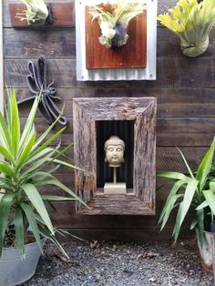 #Buddha head on stand in #rustic #recycledtimber box frame 75cm x 52cm x 15cm suitable for inside or out. Complete for $95 See our website to order www.newagerusticdesigns.com.au