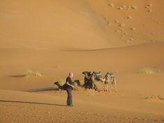 Photo of Majestic Sahara Casablanca, Morocco, Trip Advisor, Need To Know, Camel, Trail, Tours, Animals, Wilderness
