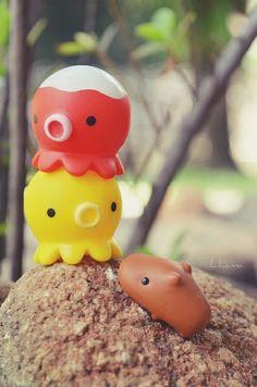 kapi•bara•san wants to p l a y ! [´・ω・`] | takochus and kapibara having fun
