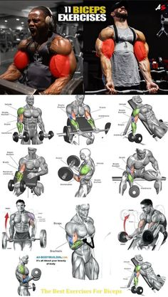 My Biceps & Triceps Workout Routine for Bigger Arms Size Big Biceps Workout, Best Chest Workout, Gym Workout Tips, Weight Training Workouts, Chest Workouts, Fitness Workouts, Workout Challenge, Workout Plans, Yoga Fitness