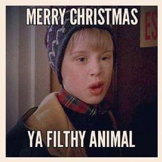 Merry Christmas Ya Filthy Animal Meme.Pinterest