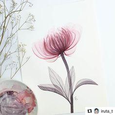 Очень трогательную прозрачную акварель создает наш автор @iruta_t  #hipoco #hipocoinspiration#hipocoflowers hipoco.com
