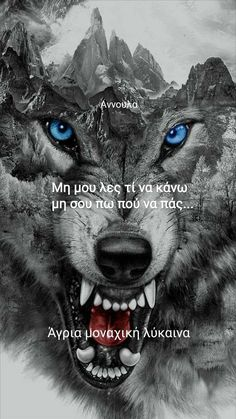 Panther, Wolf, Angel, Quotes, Pictures, Animals, Quotations, Photos, Animales