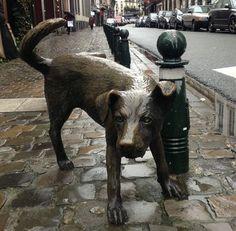 Zinneke Pis - Ca vaut le détour: La rue des Chartreux... -  Brussels, Belgium