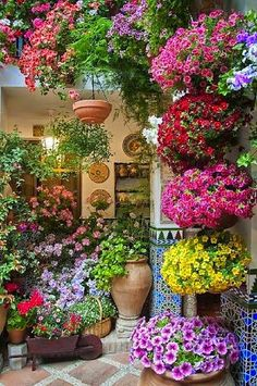Beautiful courtyard in Spain